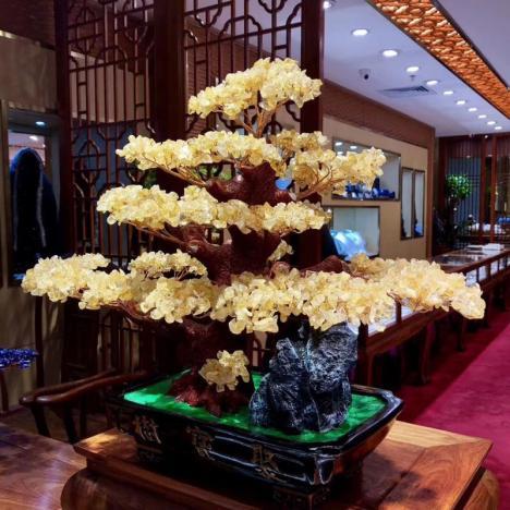 天然黄水晶招财树摆件,半米高大招财树,生意人喜欢图片