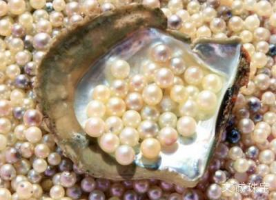 养殖珍珠的优化处理方法,漂白,染色,辐照