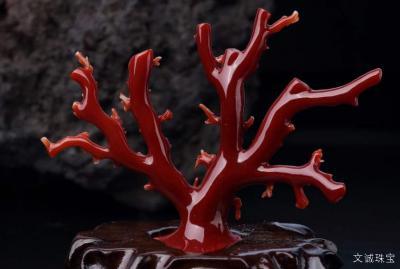红珊瑚的寓意含义是什么,红珊瑚的养生功效
