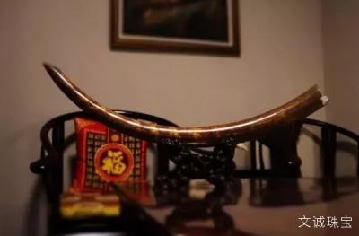 教你辨别猛犸象牙的真假,猛犸象牙真假怎么看