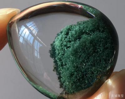 最全绿幽灵的种类,绿幽灵特点详细介绍